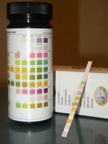 Analyses urinaires pour chats et chiens